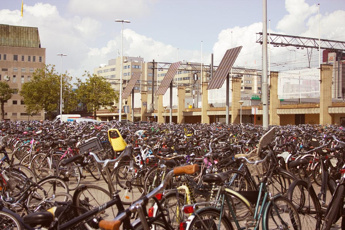 erasmus w holandii